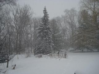Dec 19 snow