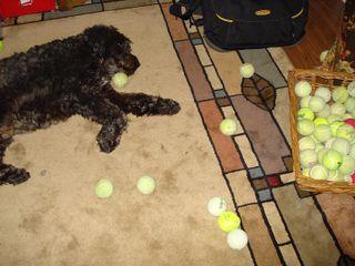 Samten has clean tennis balls